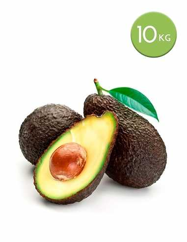 10 kg. aguacate hass