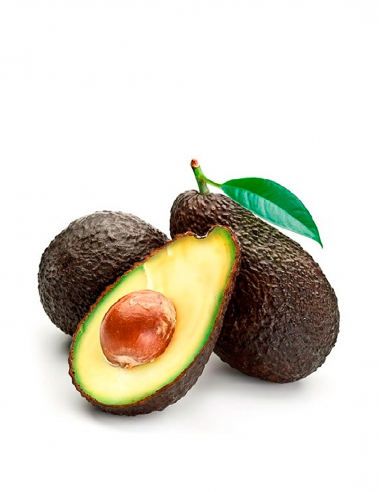 copy of Aguacate