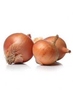 Cebolla Tierna (precio/manojo)
