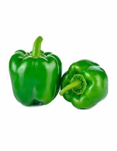 Pimiento Verde (precio/kg)