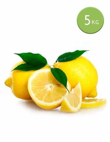 Limones (Caja 5 Kg)