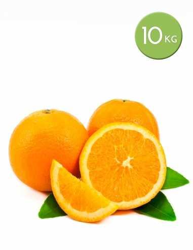 Naranjas de mesa de 10 kg.