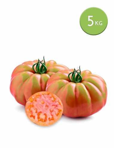 Tomate Valenciano (Caja 5 Kg)
